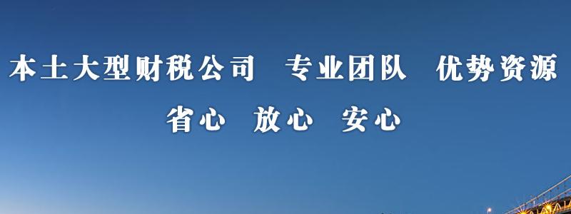 南京淳诚财务咨询有限公司